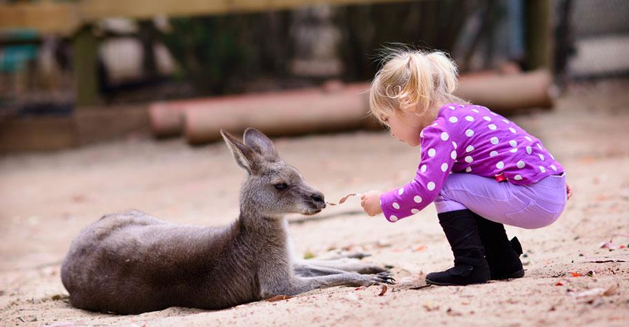 Australien Reisen mit Kindern günstig nicht Kuoni